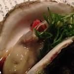18726386 - 岩牡蠣