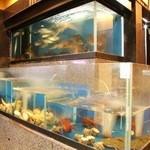 海賓亭 - 入口にある生簀には毎日直送される新鮮な魚介類が沢山!新鮮なまま調理してお届けします!