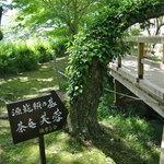茶庵 芙蓉 - 『赤蛙公園』を通過