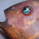 いつ樹 - キラリと光る鯛の目