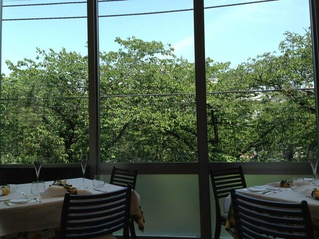リストランテ カシーナ カナミッラ - 新緑は、桜の木☆