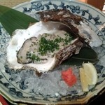 Taya - 岩ガキ