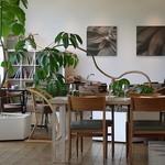 PASTA HOUSE AWkitchen FARM - カフェスペースのほうです。飾ってある観葉植物がかなりユニークな形です。