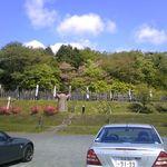 18975583 - お店の近く。関が原合戦場。石田三成陣地跡。