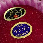 ヨシズハイ - 一玉10K円!太陽のたまご
