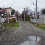 19010491 - こんな道を入って来ました