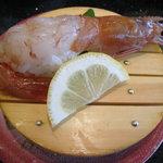 回転 さかえすし - 大海老(お腹に寿司飯が・・・)
