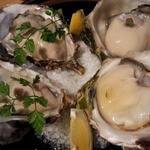 貝や しるひ - 本日の生牡蠣:岩牡蠣二種×2個ずつ