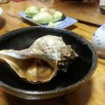19088901 - びっくりするほど大きいつぶ貝
