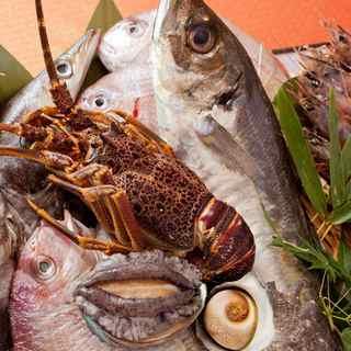 毎日入れ替わる新鮮な旬のお魚の味をお楽しみください♪