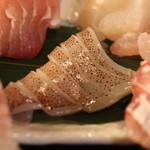 産直屋 魚渋 - ヤリイカ