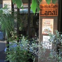 YO-HO's cafe Lanai - 自然いっぱいのハワイのイメージの通り緑に囲まれた看板