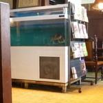 富士美 - 2013.05 謎の水槽で鯛が優雅に泳いでいました:笑