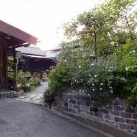 カフェ椿  - 昭和の民家を改装して、どこかなつかしい落ち着いた入り口