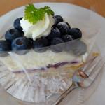 フィックルノッシュ - ブルベリーチーズケーキ