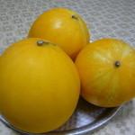 とこなつ果実 - 料理写真:イエローキング とこなつ果実