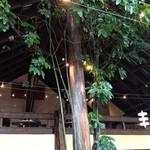 エピスカフェ - 店内の中央の木