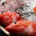 魚じょんがら べたなぎ - 自慢の鮮魚