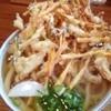 中乃家 - 料理写真:かき揚げうどん中盛り570円