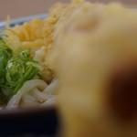 丸亀製麺 - ぶっかけ+ちく天