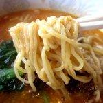 チャイニーズレストラン大幸 - 相性の良い麺!(2013,05/26)