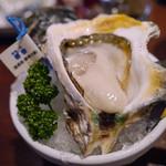 Oyster Bar ジャックポット - 限定岩牡蠣の春香