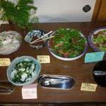 菜七色 - 料理写真:野菜バイキングがあります