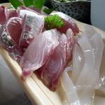 漁港めし - お刺身