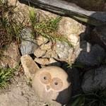 カフェ リエッコ - ふくろうとかえるさんの石像がありました