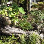 19352045 - 可愛らしいお庭に石の動物がいます