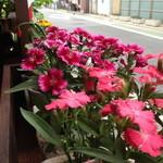 ペキーノ イ アミーゴ - マスターが手塩にかけて育てている美しいお花がいっぱいのテラス席♪