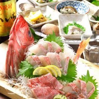 新鮮な魚の旨みをリーズナブルに召し上がれ♪