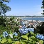 エッセルンガ - 近くの長谷寺の眺望散策路から由比ヶ浜方面の眺め