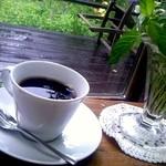 ミントガーデン - 食後のカフェは、緑を感じながら・・