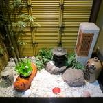 若駒 - 中庭