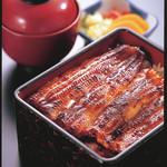 うなぎ藤田 - 料理写真:定番のうな重