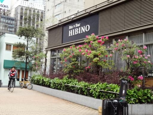 わいん酒場 HIBINO