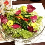 活菜旬魚 さんかい 澄川店 - サラダ