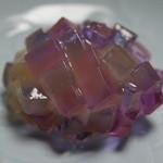 鈴懸 - 紫陽花