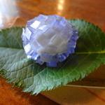 19664879 - 紫陽花 (斜視図) キラキラ光ってます~*。゜*