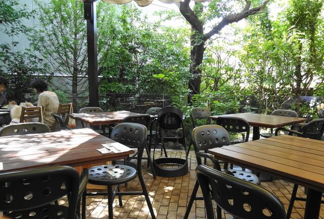 ガーデンハウス レストラン - テラスはマイナスイオンがタップリな感じ