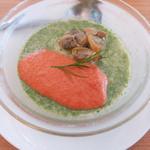 カフェ ド ヒラオカ - ほうれんそうのパンナコッタ