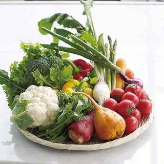 朝採れ新鮮な高原野菜を朝食からお召し上がりいただけます。