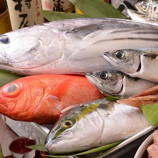 厳選仕入れ!日本近海鮮魚