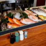 長助 まつえ - 長助のカウンターには、市場から仕入れた新鮮な魚を毎日並べてみなさまのお越しをお待ちしております