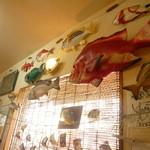 魚屋直営食堂 魚まる - カラフルなお魚達が中を舞う!