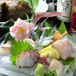 たんと - 料理写真:毎日仕入れる瀬戸内の新鮮な魚介が自慢です。