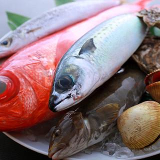 新鮮な魚を仕入れております。