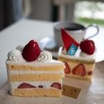 サトウヤ - 料理写真:サトウヤ (satouya) イチゴのショートケーキ