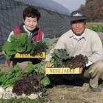 森のボナペティ - 地元中山のエコファーマー百瀬菜園ご夫妻と野菜達